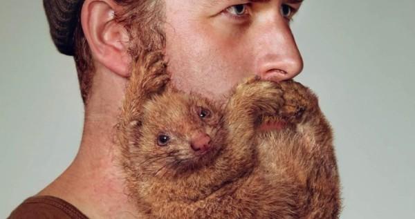 As Barbas de Animais da Schick