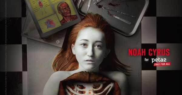 Noah Cyrus: #DissectionKills da PETA