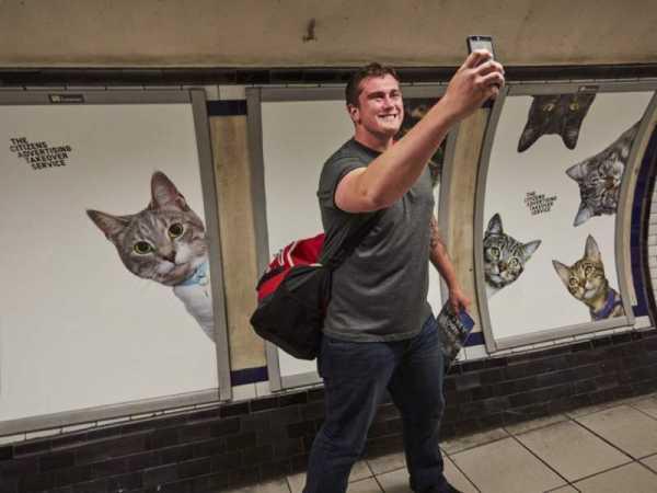 Substituindo publicidade com fotos de gatos no metrô de Londres