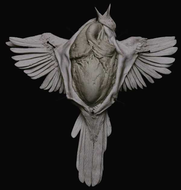 A Sombria Arte Anatômica de Emil Melmoth