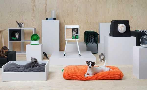 IKEA para Gatos e Cachorros: Uma linha de móveis para seus pets