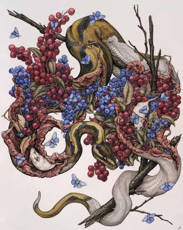 A Arte e as Ilustrações de Lauren Marx