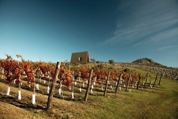 Capela Sacromonte: Uma capela triangular no meio de um vinhedo no Uruguai