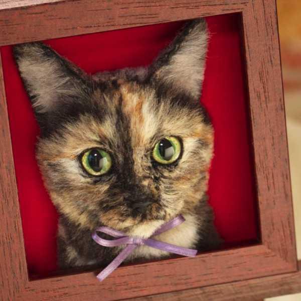 Retratos de Gatos feitos de Feltro direto do Japão